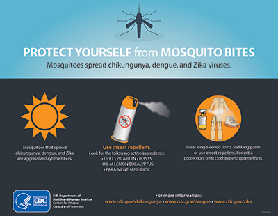 Zika Virus Is Newest Health Concern UPDATE 2-4-16